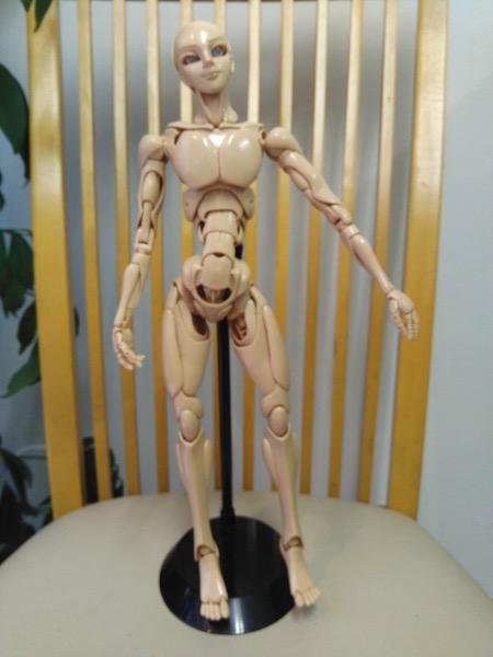 人形の骨組み